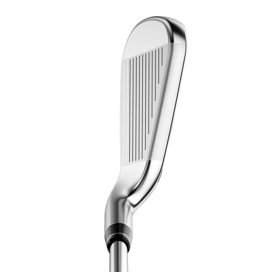Big Bertha B-21 Irons - View 2