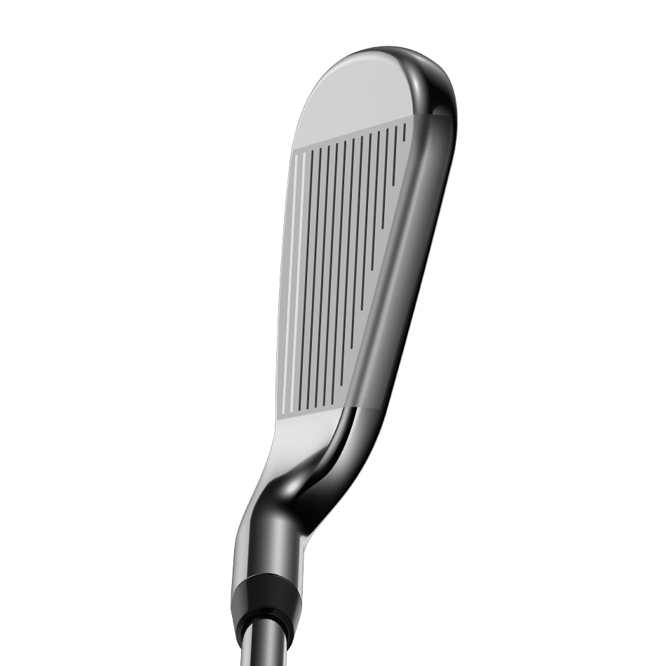 Rogue Irons - View 3