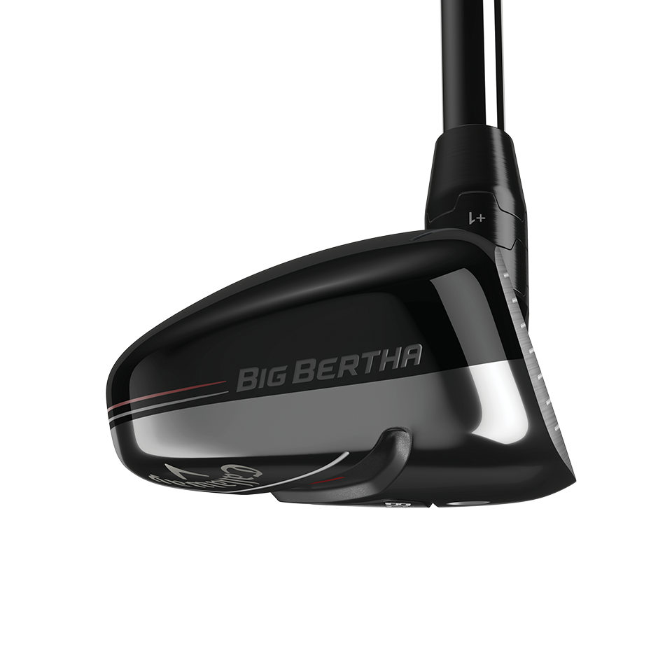 Big Bertha Hybrids - View 3