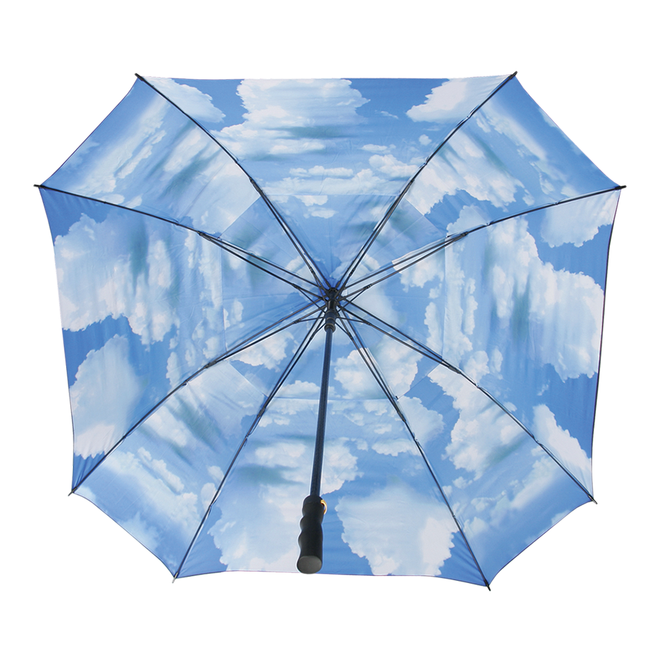 Blue Sky Umbrella - View 2
