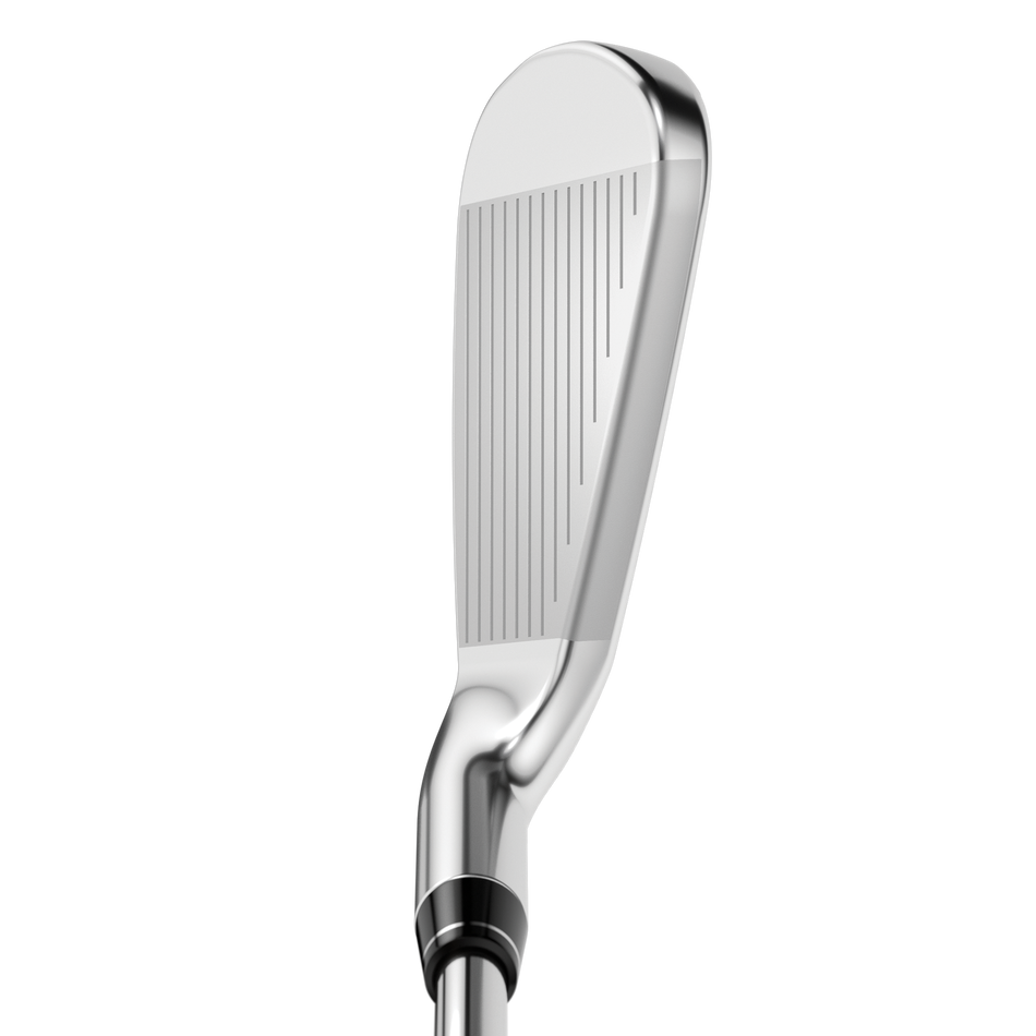 Apex DCB 21 Irons - View 2