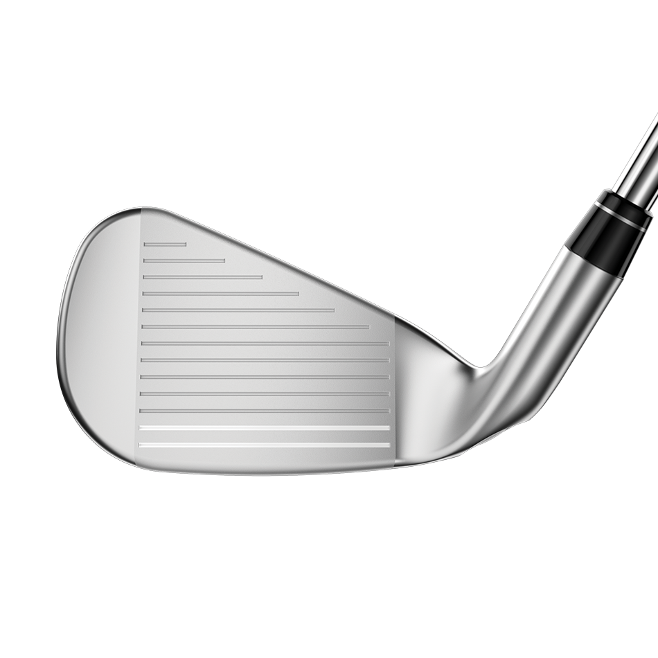 Big Bertha B21 Irons - View 3